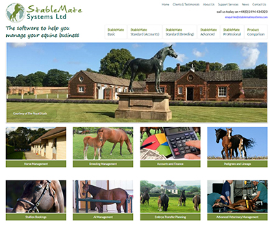 Website Design for Stablemate Systems